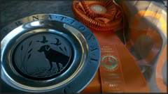 AKC Master National Awards